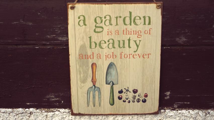 Urban Gardening mit bring-togther