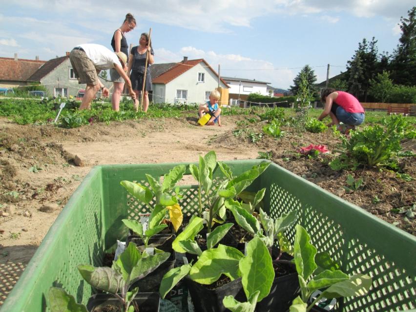 Cohousing-Siedlung Pomali. Gemeinsam Gärtnern