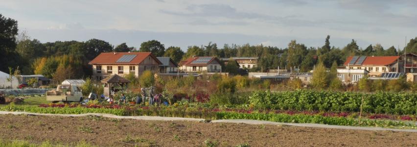 Ökodorf Sieben Linden 2021 Gemeinschaftsgarten – vorgestellt bei bring-together