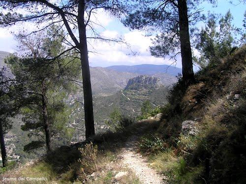 WG Alicante