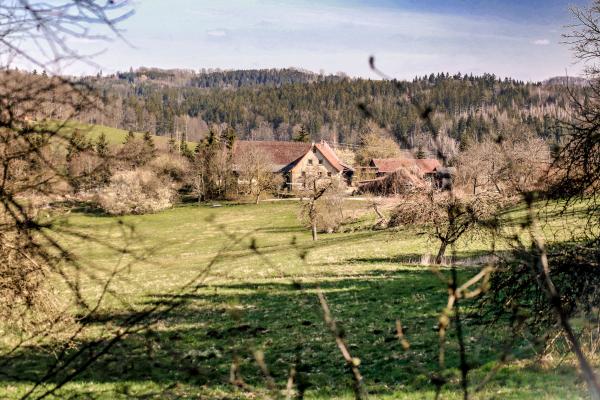 Nachbarschaftsprojekt Koiserhof