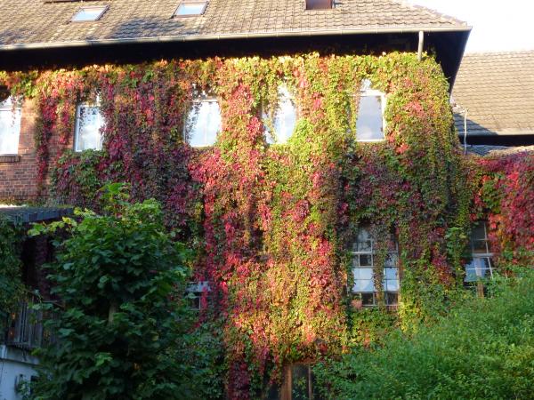 Haus für Gemeinschaftsprojekt(e) in NRW