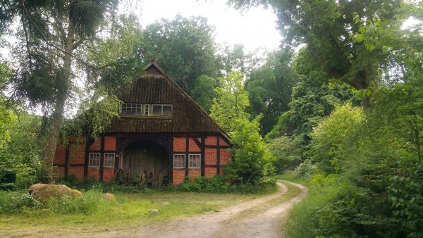 Leben - Miteinander Leben in der Lüneburger Heide