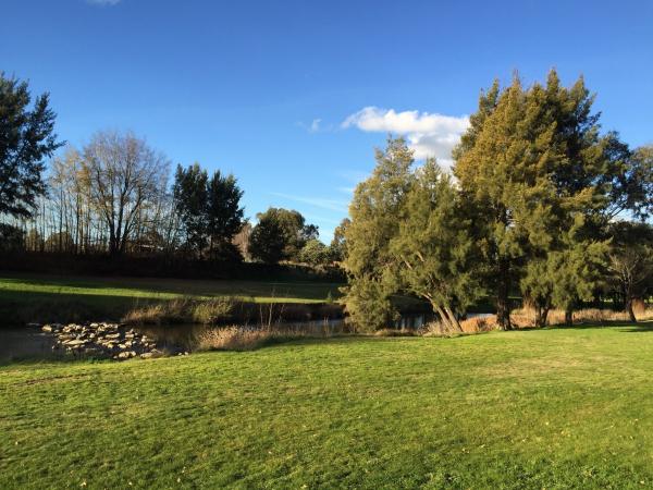 Grünes Gut am schönen Teich