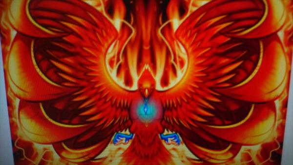 Hofprojekt Phoenix